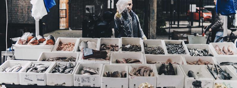 devenir poissonnier ambulant