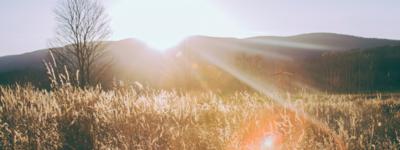 Canicule : surmonter ce climat en entreprise