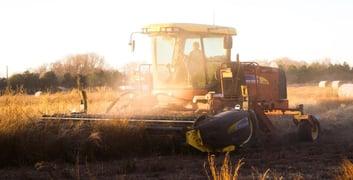 Qu'est-ce qu'une micro-entreprise agricole ?