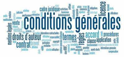 Dans quelle langue rédiger ses conditions générales de vente et d'utilisation?