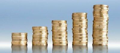 SAS à capital variable : avantages et inconvénients
