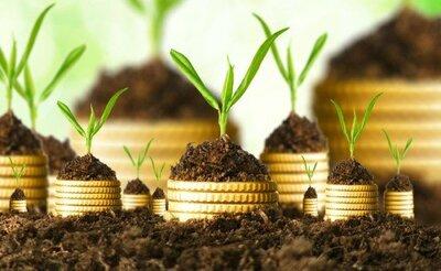 Levée de fonds pour une start-up : quelles sont les étapes